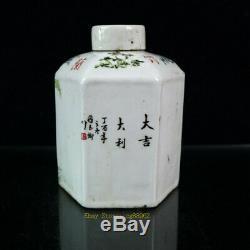 6.69 Old Antique porcelain Light color painted cock Six parties tea caddy pair