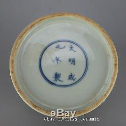 6 China old Porcelain Ming chenghua Mark doucai painting dragon tea caddy pot
