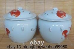 9 China Pottery WuCai Porcelain Fu Foo Dog Lion kettle Pot Vase Tea Caddy Pair