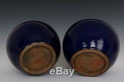 Chinese Beautiful Pair Monochrome Blue Glaze Porcelain Tea Caddies