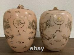 Pair Of Antique Chinese Porcelain Tea Caddy