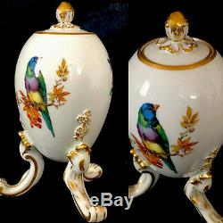 Rare meissen porcelain Egg Tea Caddy Bird Superb