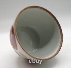 5.1 Jolie Porcelaine Chinoise Dessin À La Main Alum Red Lion Tea Caddy Pot Paire