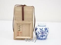 5062904 Thé Japonais En Porcelaine Caddy Cha-ire / Flower & Butterfly / Artisan Wor