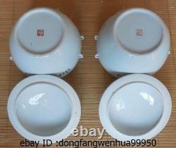 9 Chine Poterie Wucai Porcelaine Fu Foo Chien Lion Bouilloire Pot Vase Tea Caddy Paire