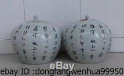 9 Chine Poterie Wucai Porcelaine Fu Foo Chien Lion Pot Pot Jur Thé Vase Caddy Paire