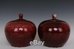 Belle Fin Chinoises Yaobian À Thé En Porcelaine Caddies