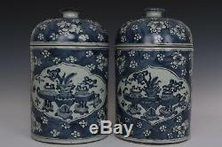 Belle Fin Paire Chinois Porcelaine Bleue Et Blanche Wintersweet Thé Caddies