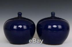 Chinois Belle Paire Monochrome Bleu Glaze À Thé En Porcelaine Caddies