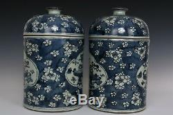 Chinois Belle Paire Porcelaine Bleue Et Blanche Wintersweet Thé Caddies