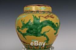Chinois Belle Paire Trois Couleurs Glaze Porcelaine Dragon Thé Caddies