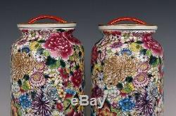 Chinoise Belle Paire Famille Rose Porcelaine Million Fleurs Thé Caddies
