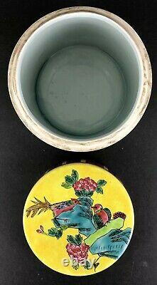 La Famille Chinoise Janue Cylindre De Porcelaine Tabac Jar/tea Caddy 19e C/