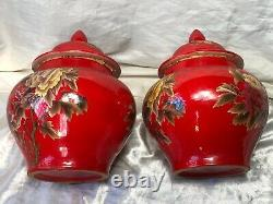 Paire Rare 20th Century Qing Style Chinois Locust Butterfly Butterfly Caddy Vases