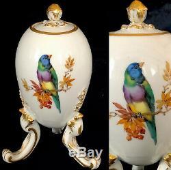 Porcelaine Rare Meissen Egg Tea Caddy Oiseau Superbe